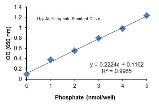ATPase Activity Assay Kit (Colorimetric)