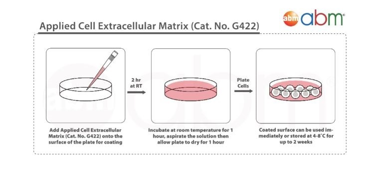 Applied Cell Extracellular Matrix