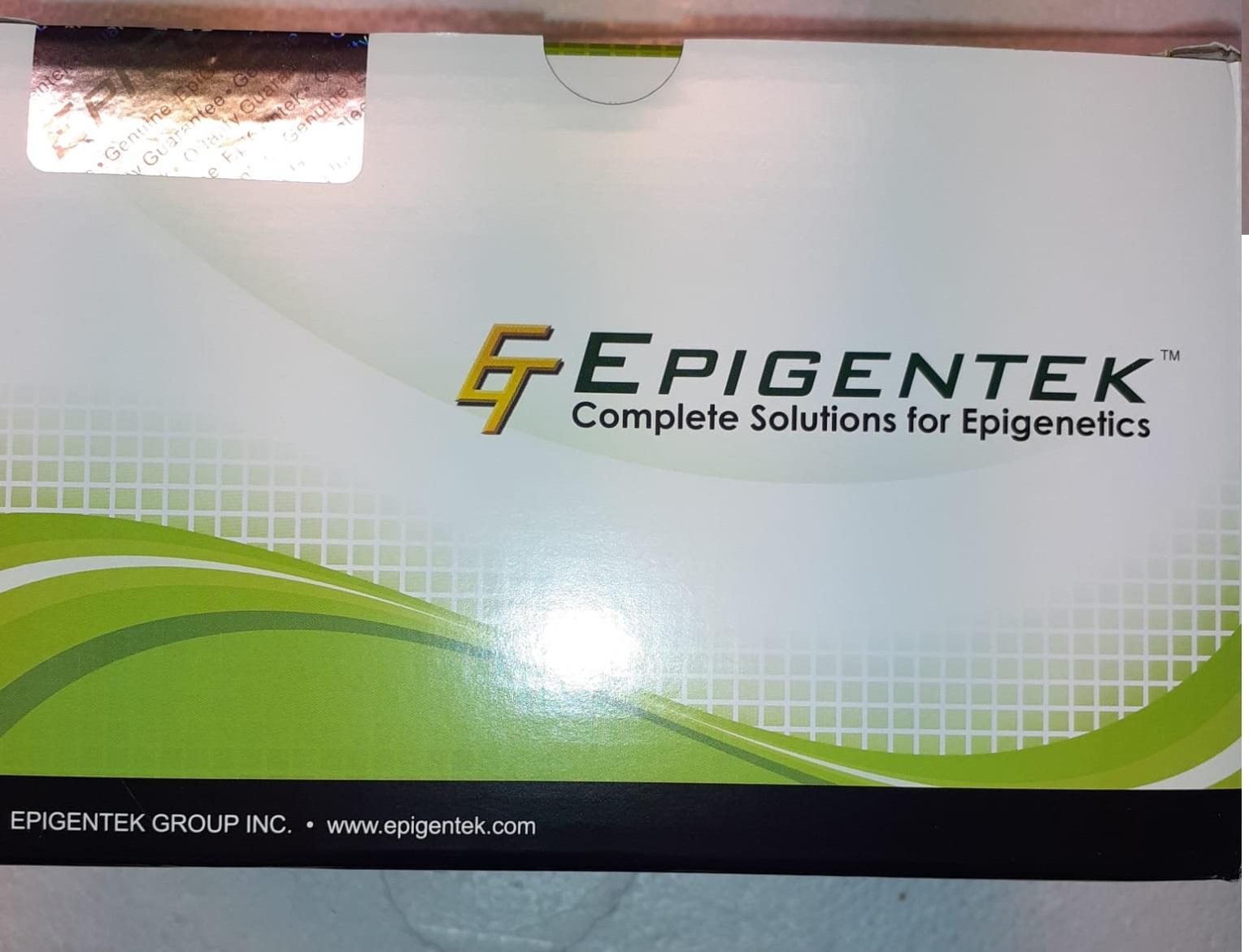 Epigentek Complete Solutions