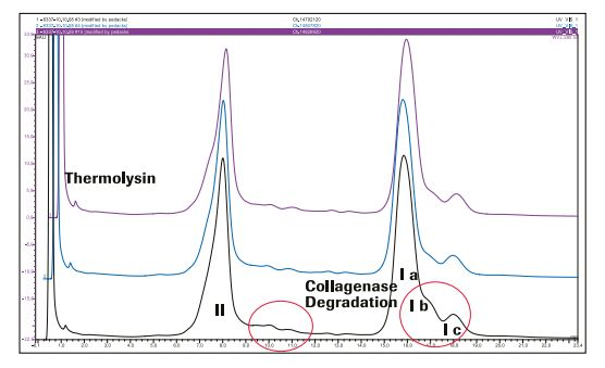 Liberase MNP-S Creative Enzymes