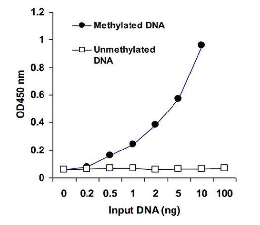 MethylFlash Methylated DNA Epigentek