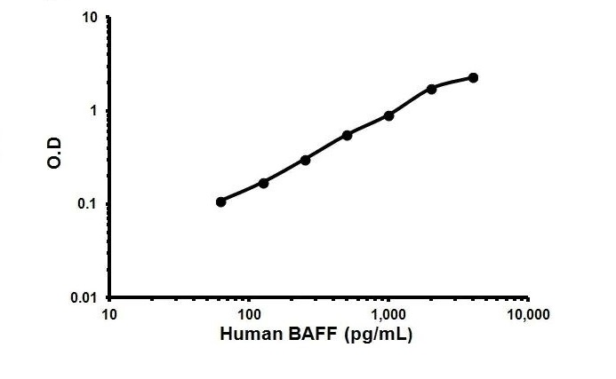 bio human baff r