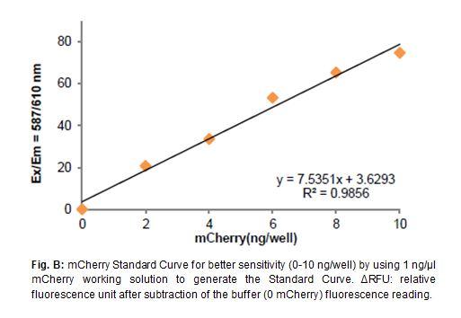 mCherry Quantification Kit